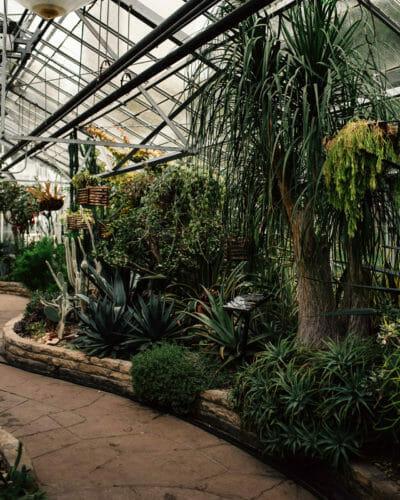 Ontario Greenhouse Wedding Venues » Chelsey Cunningham